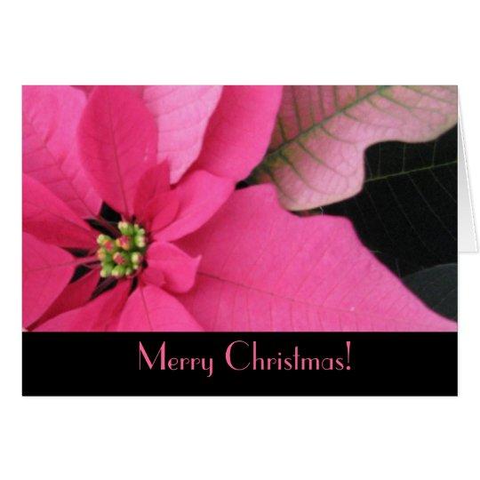 Fushia Poinsettia Christmas Greeting Card
