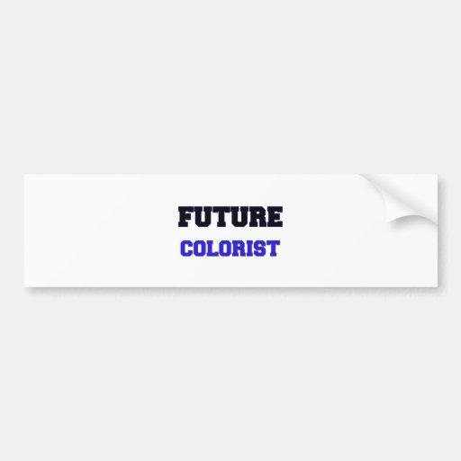 Future Colorist Bumper Sticker