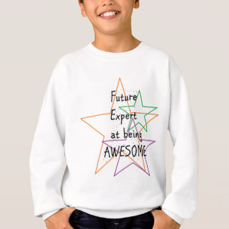 future expert at being awesome sweatshirt