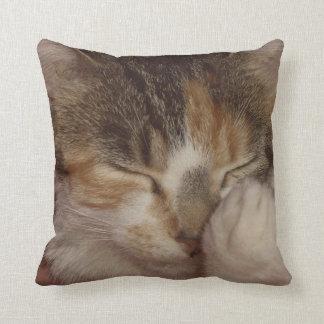 Fuzzy Face Throw Pillow