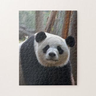 Fuzzy Panda Puzzle