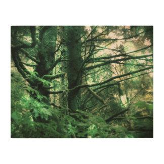 Fuzzy Trees Wood Print