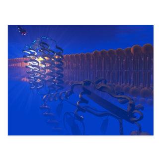 G Protein Receptor postcard