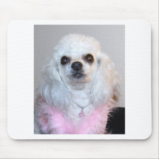 Gabby white poodle fancy dressed in Pink Mouse Pad
