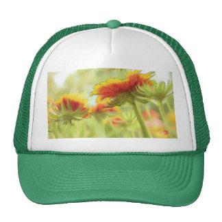 Gaillardia Meadow In The Summer Sun Mesh Hat