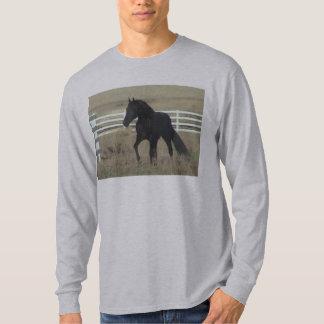 Gaited Black Stallion T-Shirt