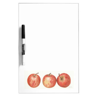 Gala apples Dry erase board. Dry Erase White Board