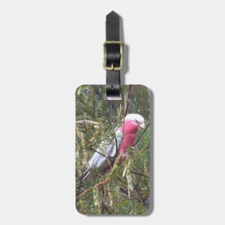 Galah Luggage Tag