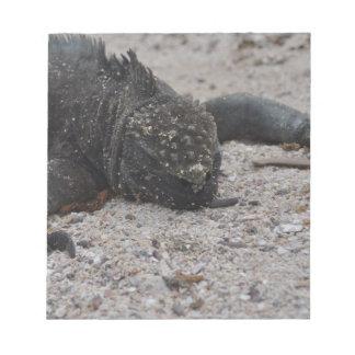 Galapagos1 Notepad