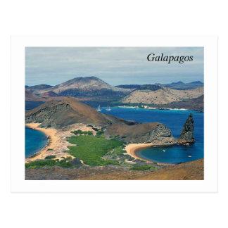 Galapagos - Ecuador Postcard