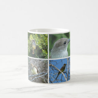 Galápagos Flycatcher Coffee Mug