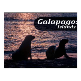 Galapagos Island Poster Postcard