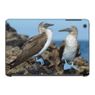 Galapagos Islands, Isabela Island iPad Mini Case