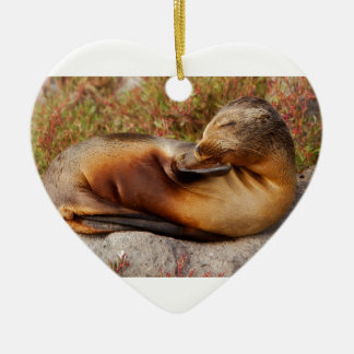 Galapagos Sea Lion Ceramic Ornament