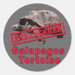 Galapagos Tortoise  Endangered Art Tshirts Round Stickers