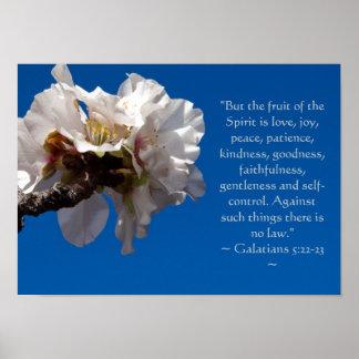 Galatians 5:22,23 Poster