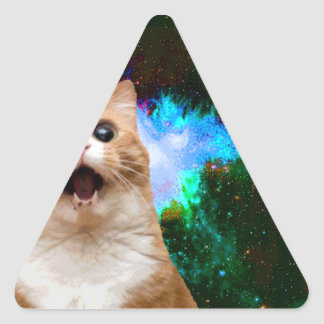 GALAXY CAT TRIANGLE STICKER