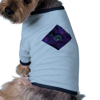 Galaxy Explorer. Space Exploration. Futuristic Dog T Shirt