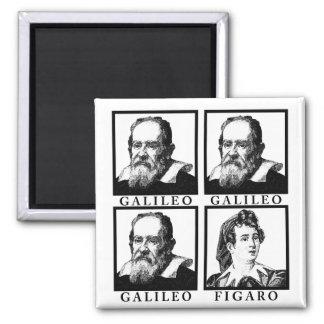 Galileo Figaro BW Magnet