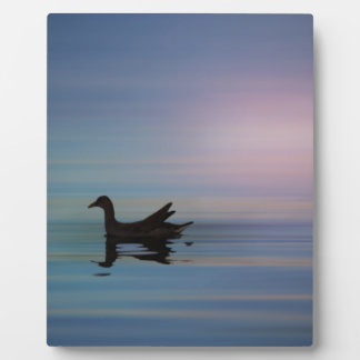 Gallinule Smooth Plaque