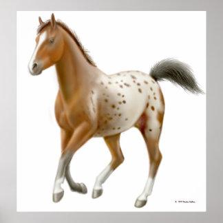 Galloping Appaloosa Horse Print