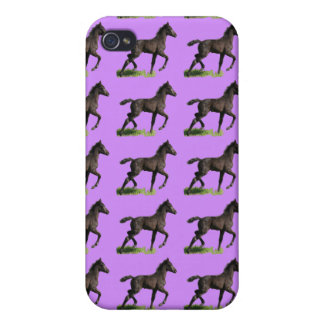 Galloping Black Colt Baby Horse Art Cover For iPhone 4