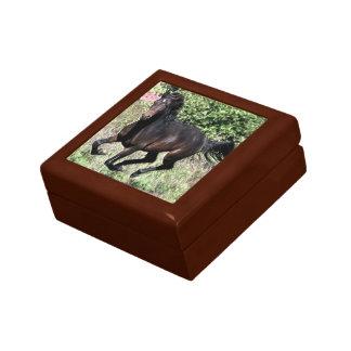 Galloping Chestnut Horse Gift Box