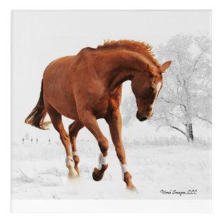 Galloping Horse Acrylic Wall Art