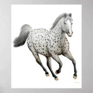 Galloping Leopard Appaloosa Horse Print