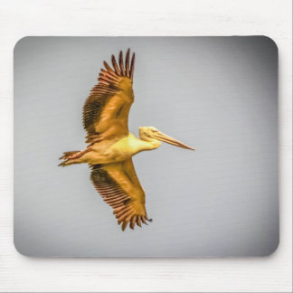 Gambia Pelican Mouse Pad
