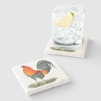 Gamecock Blue Red Rooster Stone Coaster