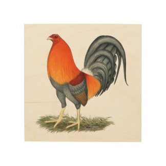 Gamecock Blue Red Rooster Wood Print