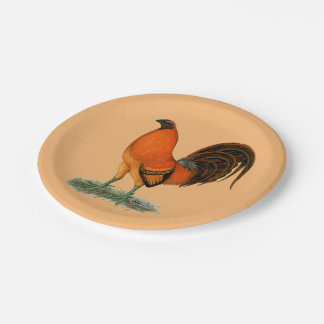 Gamecock Ginger Red Rooster Paper Plate