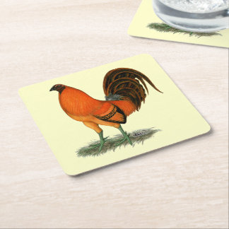 Gamecock Ginger Red Rooster Square Paper Coaster