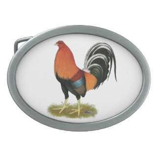 Gamecock Wheaten Rooster Oval Belt Buckle