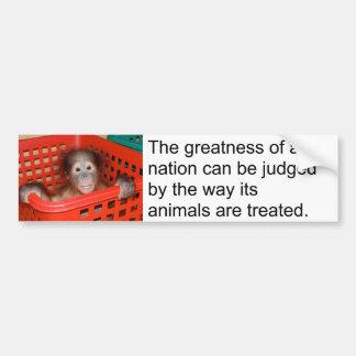 Gandhi Quote Cute Animal Bumper Stickers