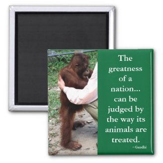 Gandhi's Animal Quotation Square Magnet