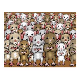 Gang Bunch of Rats Postcard
