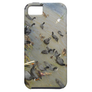 Gang of Water Fowl iPhone 5 Covers