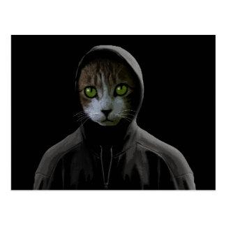 Gangsta cat postcard