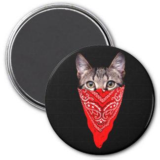 gangster cat - bandana cat - cat gang magnet