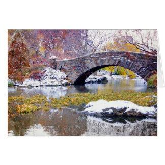 Gapstow Bridge - Central Park, New York City Card