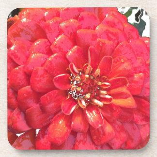 Garden Blooms - Red Beverage Coaster