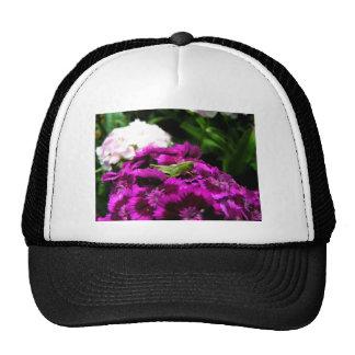 Garden Bouquet Cap