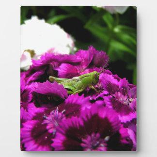 Garden Bouquet Plaque
