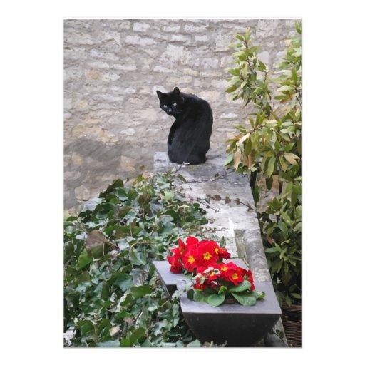 Garden Cat Birthday Invites