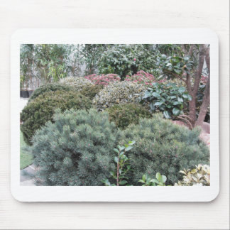 Garden centre with selection of nursery plants mouse pad