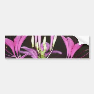 garden flower bumper sticker