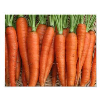 Garden Fresh Heirloom Carrots Photo Print