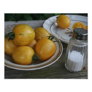 Garden Fresh Homegrown Tomatoes Ready to Eat Photo Print